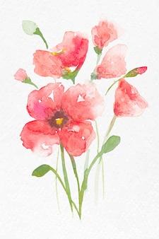 Gráfico estacional de primavera de vector de acuarela de flor de amapola rosa