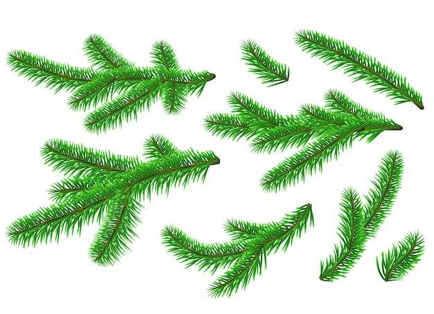 Gráfico realista año nuevo ramas de abeto de pino