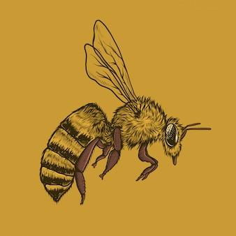 Gráfico de la vendimia de vuelo de abejas ilustración vectorial mano