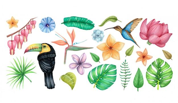 Gran acuarela con flores tropicales, pájaros y hojas