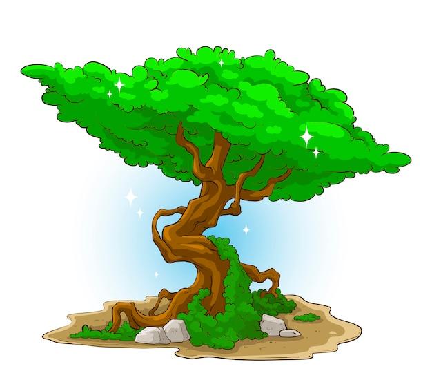 Gran árbol verde con musgo y piedra