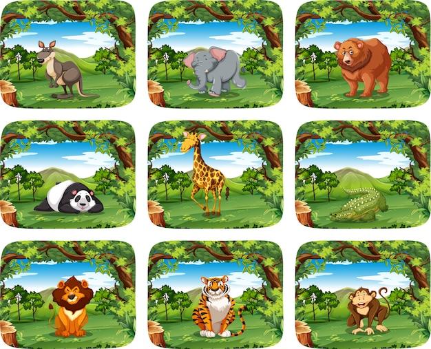 Gran conjunto de animales en escenas.