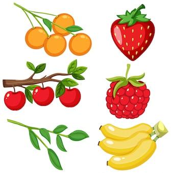 Gran conjunto de diferentes tipos de frutas sobre fondo blanco.