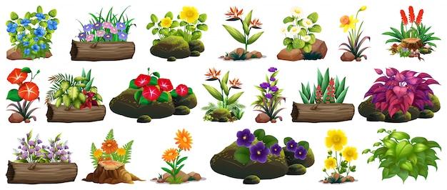 Gran conjunto de flores de colores sobre rocas y madera.