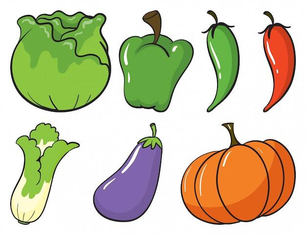 Gran conjunto de frutas y verduras sobre fondo blanco.