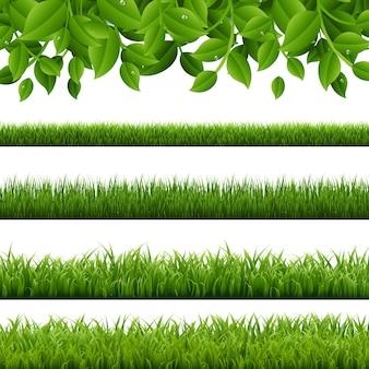 Gran conjunto hierba verde y fronteras hojas sobre fondo blanco