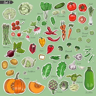 Gran conjunto de vegetales de etiquetas de colores.