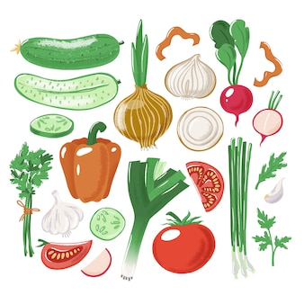 Gran conjunto de verduras enteras, cortadas y en rodajas tomate pepino pimiento cebolla ajo puerro perejil rábano