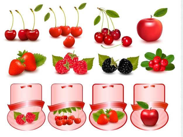 Gran grupo de bayas y cerezas frescas. ilustración