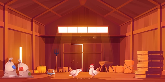 Granero interior con pollo, casa de campo vista interior