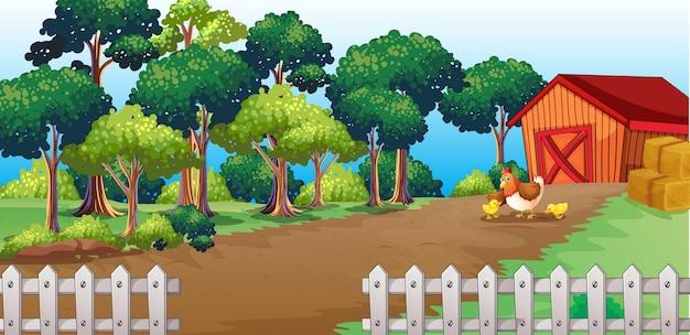 Granja en escena de la naturaleza con granero y pollito.