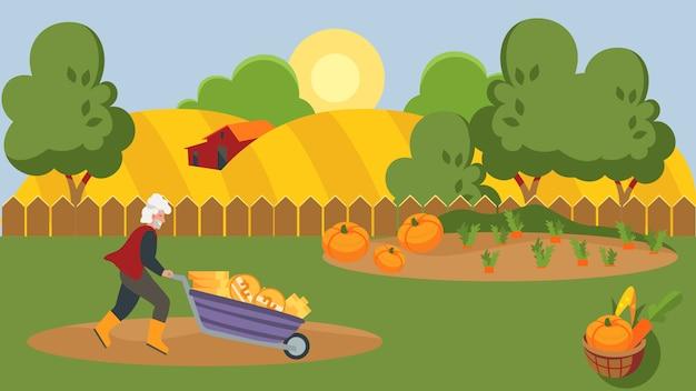 Granjero senior ganando dinero, carretilla llena de monedas de oro, ilustración vectorial