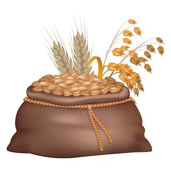 Granos de centeno en saco marrón con sus orejas y avena