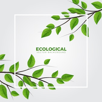 Green ecology branch clean background