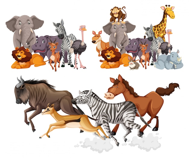 Grupo de animales salvajes estilo de dibujos animados aislado sobre fondo blanco.