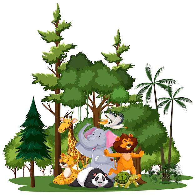 Grupo de animales salvajes o zoológicos con elementos de la naturaleza.