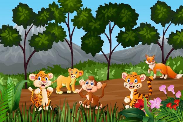 Grupo de animales salvajes reunidos en el borde del bosque.