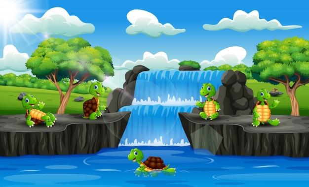 Grupo de dibujos animados de tortugas en escena de cascada
