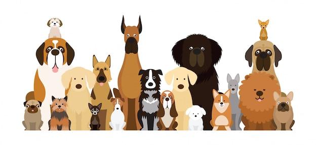Grupo de ilustración de razas de perros, varios tamaños, vista frontal, mascota