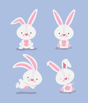 Grupo de lindos conejos