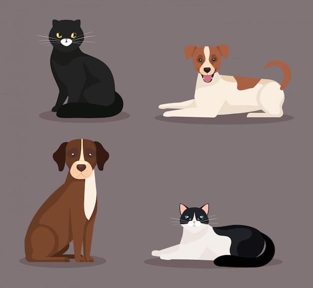 Grupo de lindos gatos y perros