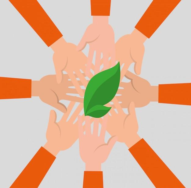 Grupo de manos con planta de hoja