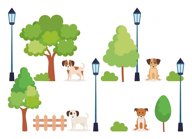 Grupo de perros en el parque