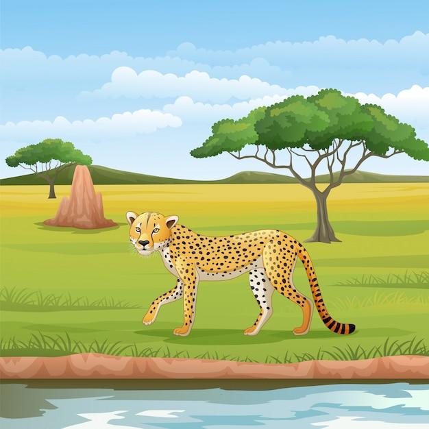 Guepardo de dibujos animados en la sabana
