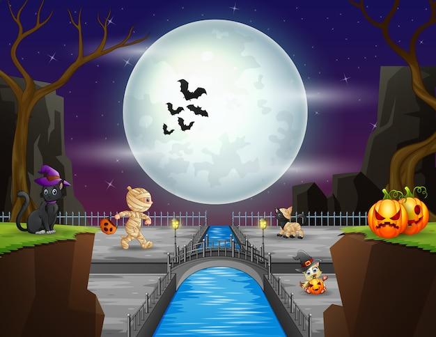 Halloween con momias y animales de halloween.