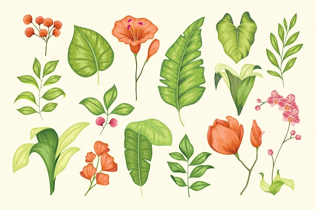 Hermosa colección floral vintage dibujada a mano