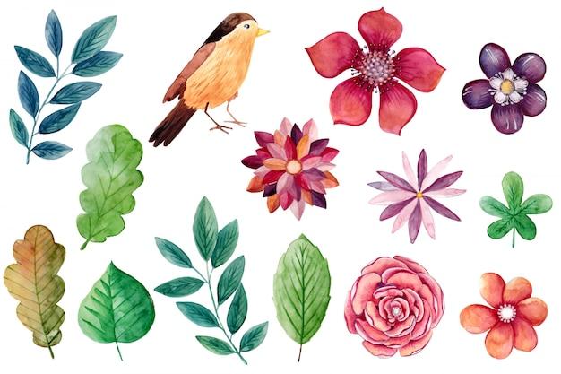 Hermosa colección de flores pintadas a mano.