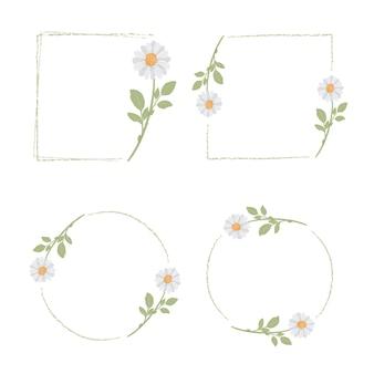 Hermosa colección mínima de marcos de flores de margarita blanca