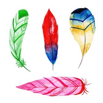 Hermosa colección de plumas de acuarela