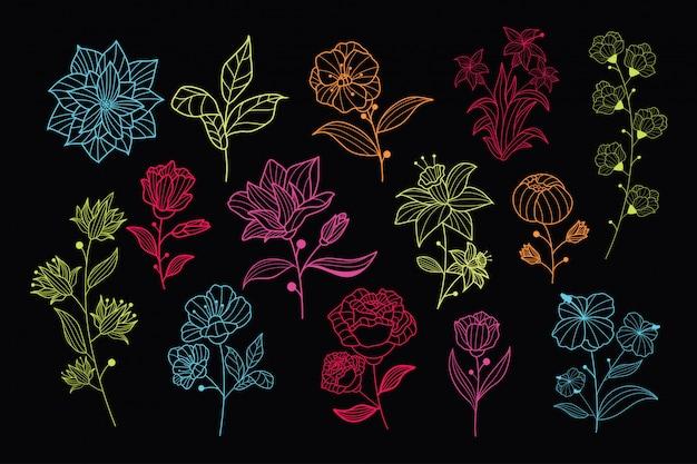 Hermosa colección de vectores florales dibujados a mano de neón
