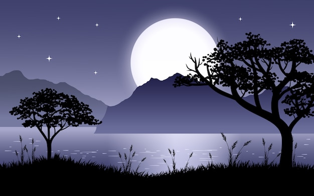 Hermosa escena nocturna en el lago con silueta de árboles