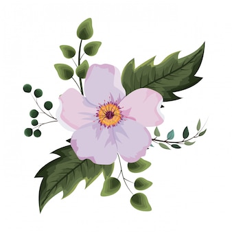 Hermosa flor de dibujo