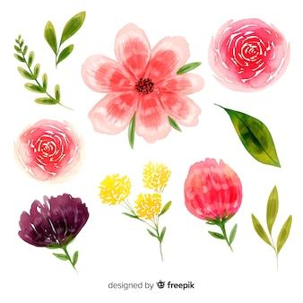Hermosa flor flores fondo acuarela