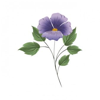 Hermosa flor con hojas aisladas icono