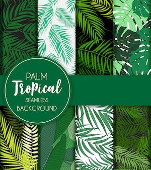 Hermosa palmera hoja silueta conjunto de patrones sin fisuras