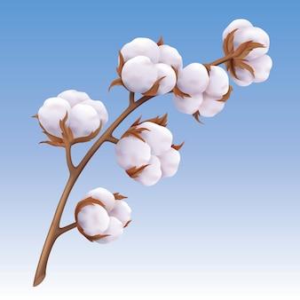 Hermosa rama de algodón realista sobre fondo azul