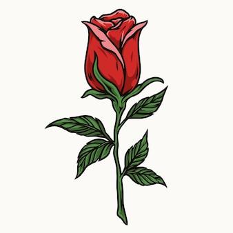 Hermosa rosa roja con hojas en estilo aislado