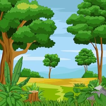 Hermosa selva verde con montañas y plantas.