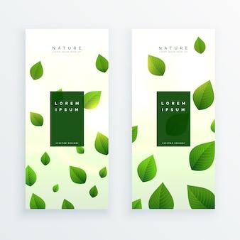 Hermosa tarjeta de banner vertical de hojas verdes