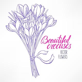 Hermosa tarjeta de felicitación con ramo de crocos de dibujo. ilustración dibujada a mano