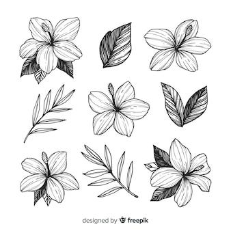 Hermosas flores estilo dibujado a mano