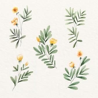 Hermosas flores y hojas doradas