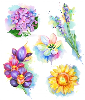 Hermosas flores, pintura de acuarela, conjunto de malla