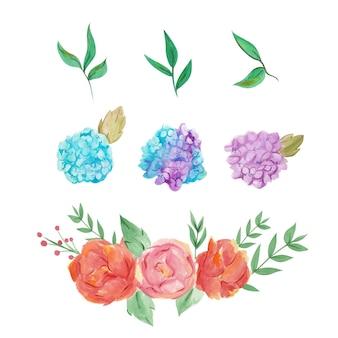 Hermosas rosas e hidrageas pintadas a mano en acuarela.