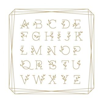 Hermoso alfabeto floral monoline colección oro.