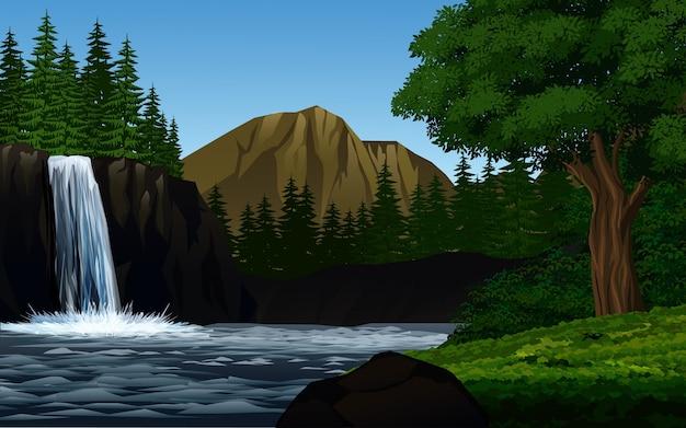 Hermoso bosque con cascada